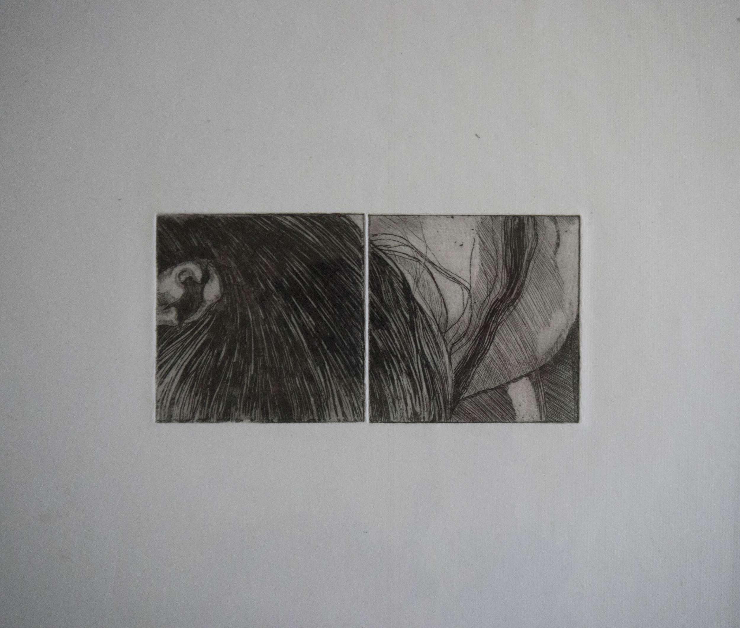 Code 5C, Code 6C Hair&EarSQ Image